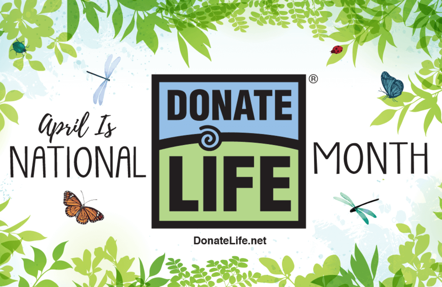 2020 Donate Life Month artwork, the scene of a garden with flowers and butterflies.